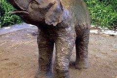 1983-Washingtn-Park-Zoo