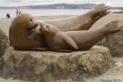 2013-Alki-Beach-Seals