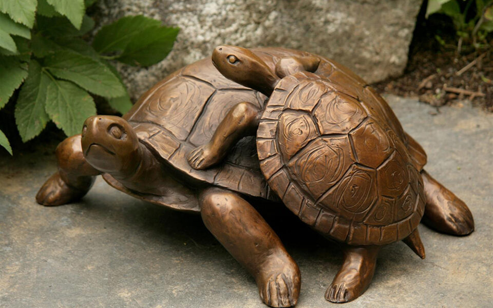 """Turtle with Yearling"""
