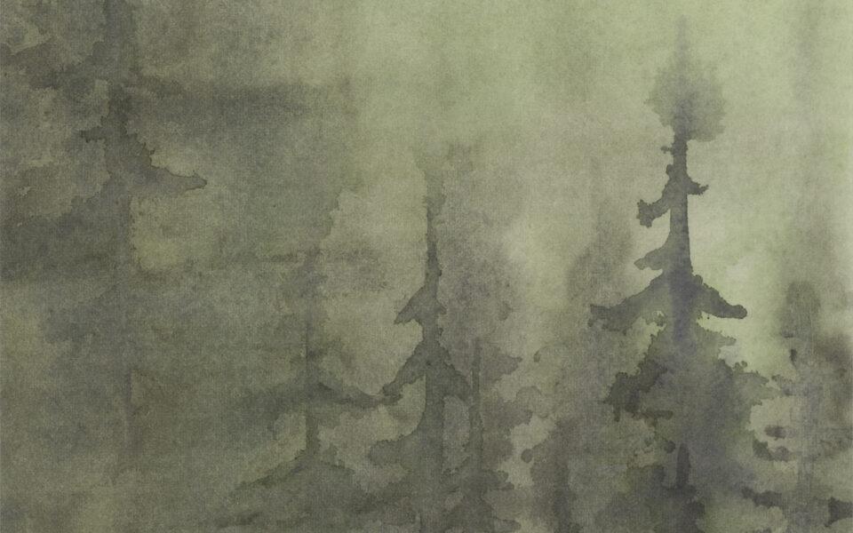 Dana's Forest